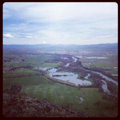 Mt Pitt (McLoughlin)