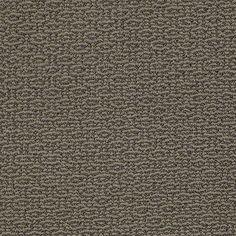 shaw carpet, carpet idea