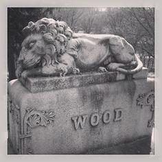 sweet homeiowa, grant wood, amaz cemeteri, thing iowa, fabul cemeteri, cemeteri plot