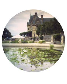 to the manor born by theswanandthefox on Etsy