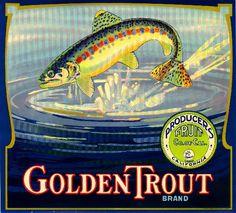 Lindsay Tulare County Golden Trout Orange Citrus Fruit Crate Label Art Print. $9.99, via Etsy. vintag art, fruit crate, crate art, crate label, fish, art prints, golden trout, oranges, orang label