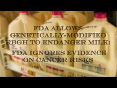 ▶ Today's Modern Food: It's not what you think - Part 1 of 2 - YouTube