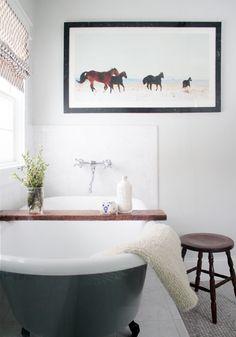 HORSIES IN THE BATHROOM
