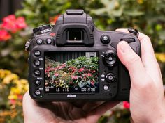 Camera nerds only: How to process and edit raw files