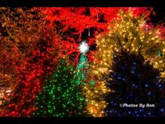 A Silver Dollar City Christmas