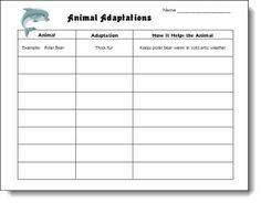 Animal Adaptations Chart