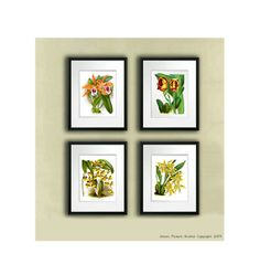 Set of 4 Vintage Orange Yellow Orchid Plant Prints Tropical Island Hawaiian Decor Wall Hanging Art prints 8x10 Bedroom Wall Decor