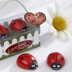 My bug, my bug, my lovely lady bug....magnets!