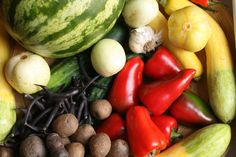 Green Business Ideas: Organic Community Supported Agriculture (CSA)