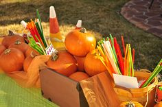 Pumpkin Craft Table