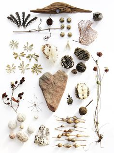 natur collect, coastal gardens, heart rocks, nature collection, nature table, baskets, great lakes, nature study, natural styles