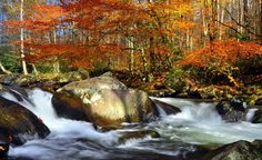 Fall in Great Smoky Mountains National Park