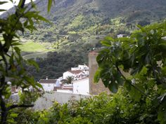 Dreaming of the White Washed villages in Spain.