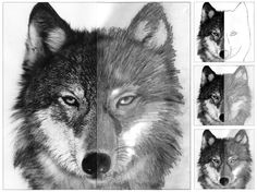 I remember doing this in middle school.  Would be a good end-of-year project, beginning of year project or early finisher work --- Art Projects for Kids: Finish the Wolf Face