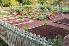 """Ranking Vegetables for Efficiency """"This list from the National Garden Bureau rates vegetables based on their total yield per square foot, average value per pound, and length of time in the garden."""""""