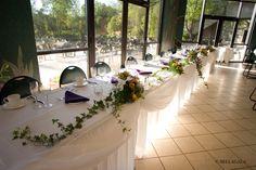 Another Minnesota Zoo wedding! Photo by Bellagala