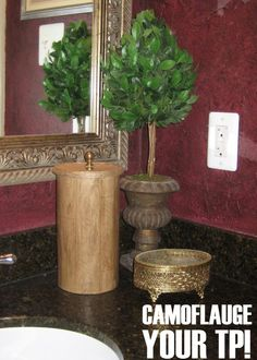 How to camouflage your TP with an oatmeal container and mod podge!