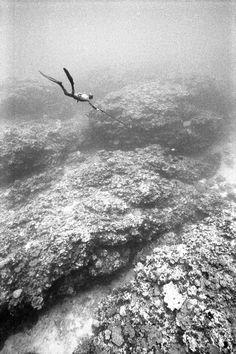 Unbelievable black and white underwater photos - Kanoa Zimmerman