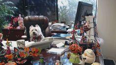 Happy Halloween from Tucker Griffin Barnes