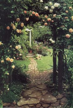 Rose arbor and path
