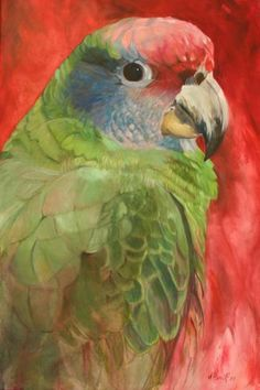 Artists for Conservation   Kitty Harvill