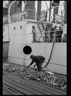 Untitled photo, possibly related to: Dock scene, Mobile, Alabama. 1937 Feb. Library of Congress.