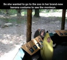 Too cute, too funny little girls, costum, monkeys, funny pictures, parenting done right, the zoo, bananas, funni, kid