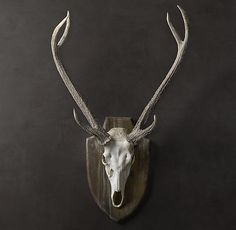 in resin from antlers that were naturally shed, these deer antlers ...