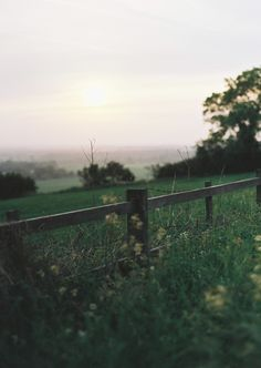 field, fenc