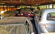 Another Collection Discovered in NC - http://barnfinds.com/another-collection-discovered-in-nc/