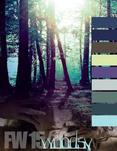 Fall / Winter 2015/2016 Color Inspirations: Woodsy