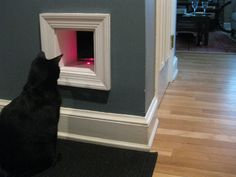 How To: Building a Cat Tunnel in Your Home