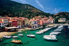 favorit place, bicycles, beaches, bicycl tour, dream vacat, sea, tuscany italy, magic place, itali