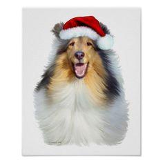 Collie Christmas San