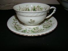 Franconia Hawthorne. Dishes from great granny