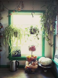 'Our space is all about creative reuse, personalization, vivid colors, bold patterns, worldly and thrifted finds, and lots and lots of plants...bringing the eclecticism of nature and the wild indoors.'