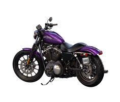 2014 Harley-Davidson® Sportster® Iron 883™ Motorcycles Hard Candy Voodoo Purple Flake-Black 13-Spoke Cast Aluminum