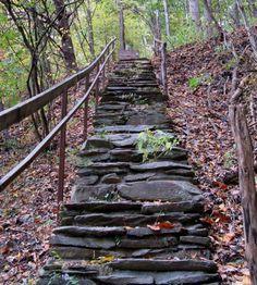 fairegarden blog, fairi garden, hillsid step, adventur lie, garden idea, happi trail, slope step, lie ahead, blog share