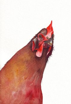 Chicken Painting - country rustic urban homestead natural decor -  Print of watercolor painting - 5 by 7 print. $15.00, via Etsy.
