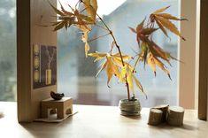fall foliage in a dollhouse