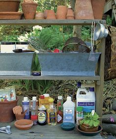 Garden pest and disease remedies from your pantry and medicine chest