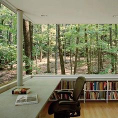 Wouldn't it be nice to have this view while working. I would just stare out in the woods when I need a break.