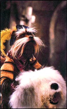 Labyrinth.  Sir Didymus  and Ambrosia! Every time I see this it looks more like Scruffy, riding a white dog.