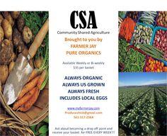 Farmer Jay Pure Organics baskets weekly or bi-weekly http://www.myfarmerjay.com