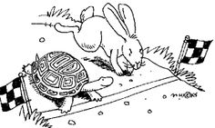 Christian Turtles And Believer Bunnies Teen Devotion - Dare 2 Share Youth Ministry Resources