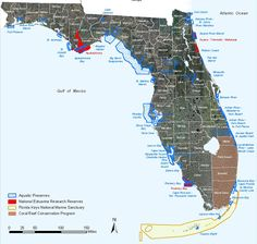 Many of the special aquatic places around Florida are a part of managed areas designed to benefit people and the environment.