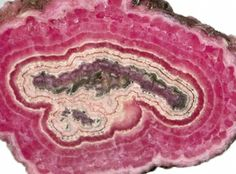 | Polished Rhodochrosite stalactite slice - Capillitas Mine, Catamarca ...