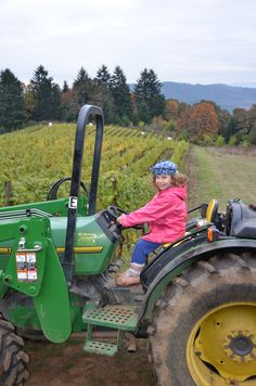 There is a lot of work to do during wine harvest.  On a family farm everyone is involved.