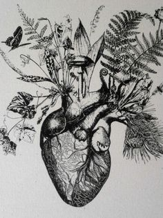 """Botanical art mixed with anatomical drawings are interesting and a total fit with this """"artifact"""" style."""