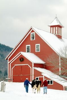 Winter at Liberty Hill Farm